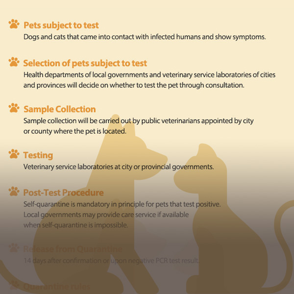 COVID-19 Test and Quarantine Guidelines for Pets