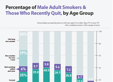 Percentage of Male Adult Smokers & Those Who Recently Quit, by Age Group