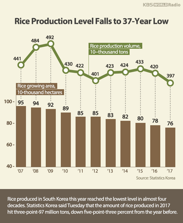 Rice Production Level Falls to 37-Year Low