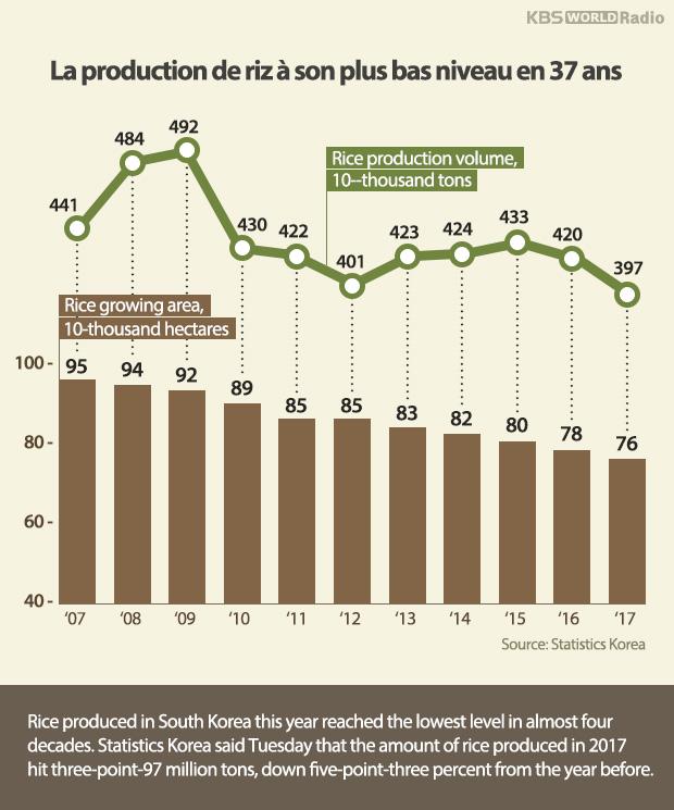 La production de riz à son plus bas niveau en 37 ans
