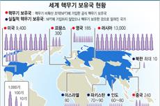 세계 핵무기 보유국 현황