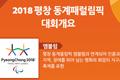 2018 평창 동계패럴림픽 대회개요