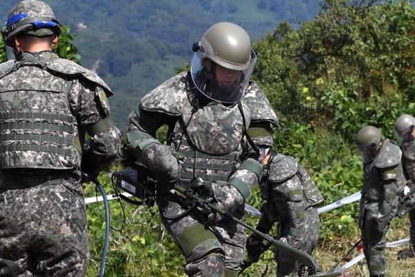 南北韩在共同警备区和非军事区开启扫雷作业
