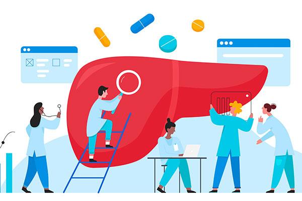 Datenbank für die Krebsforschung geplant
