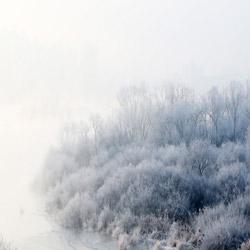 Pemandangan Musim Dingin yang Spektakuler