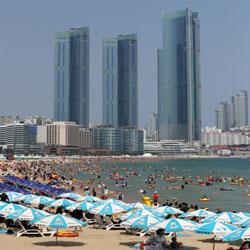 Packed Busan Beach