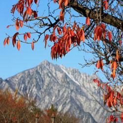 L'automne cède sa place à l'hiver