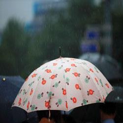 الانطلاق إلى المنزل تحت زخَّات المطر