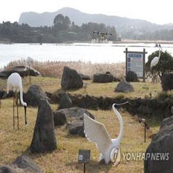 Drone Disinfeksi Habitat Burung Bermigrasi