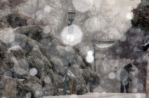 Tierra de nieves