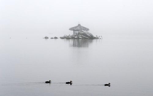 Bruma en el lago Gyeongpo