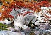 Mùa thu trên núi Jiri