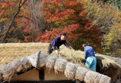 Winter Preparations at Seongyojang