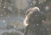 Salju di Atas Cuaca yang Membeku