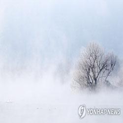Hielo y niebla