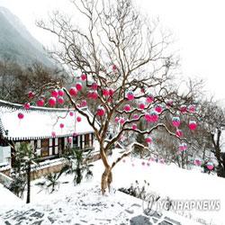 Salju di Lentera Merah