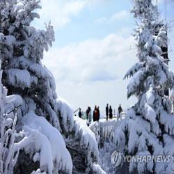 Snow Scene in May