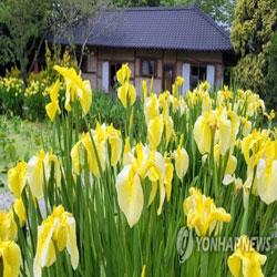 Taean Arboretum