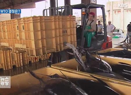 Séoul va défendre son embargo sur les produits halieutiques de la région de Fukushima