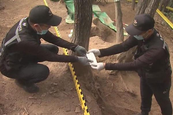 Retirada de minas en la zona fronteriza intercoreana