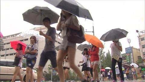 Curah hujan bulan Agustus capai 320 mm