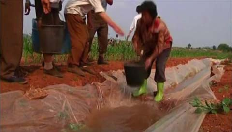 Pyongyang solicita medicinas para enfermedades relacionadas con el agua