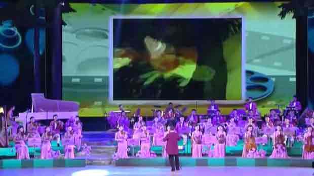 Юг и Север согласовали визит северокорейских артистов на Олимпиаду в Пхёнчхане