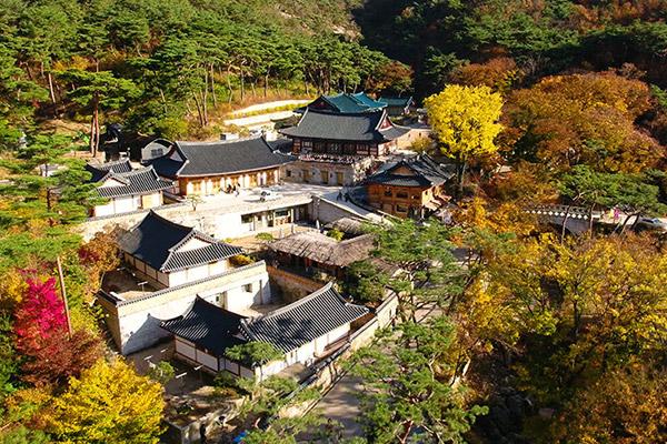 Die buddhistische Tempelküche Koreas – Speisen für Leib und Seele