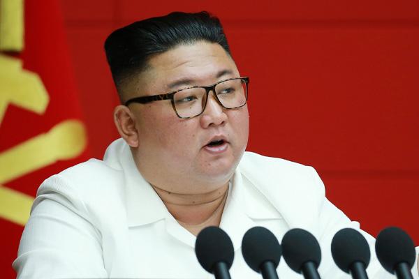국가정보원이 보고한 김정은 위원장의 위임통치
