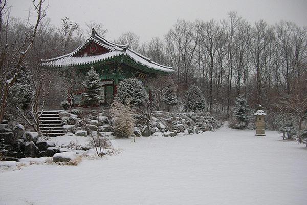 Über den Zen-Buddhismus. Folge 2: Perfekte Ordnung