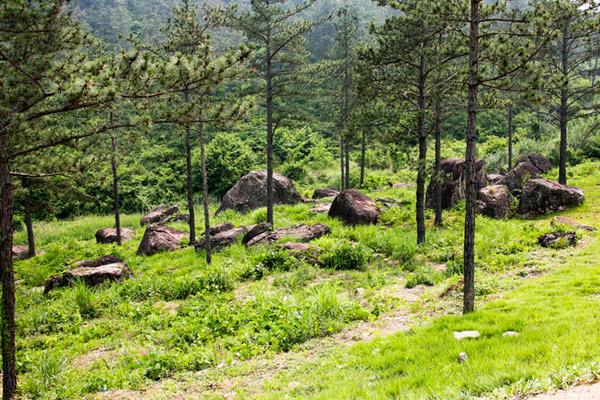 Dolmenstätte von Hwasun