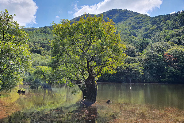 Juwangsan-Nationalpark