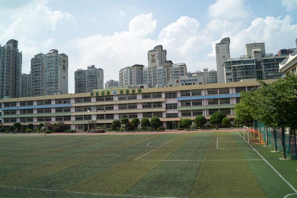 韩国小学教育