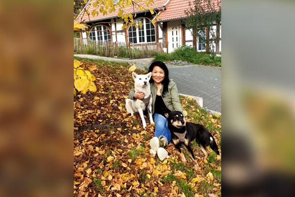 Jindo Hund in Deutschland