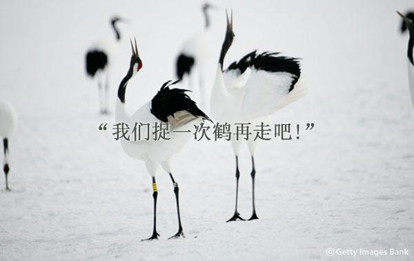 作家黄顺元的小说《鹤》