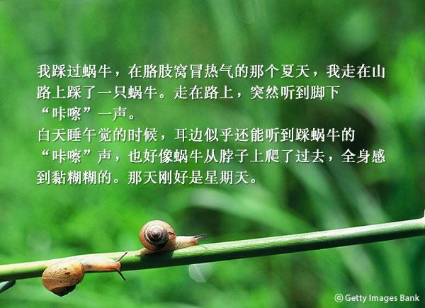 作家崔玉正的小说《萨梅与佳美》周日的蜗牛