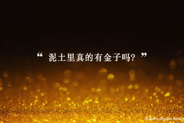 小说家金裕贞的小说《采金的豆田》