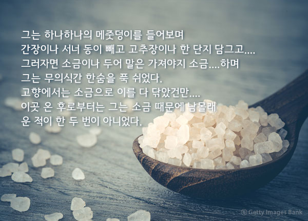 소금 - 강경애