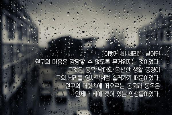 비오는 날 - 손창섭