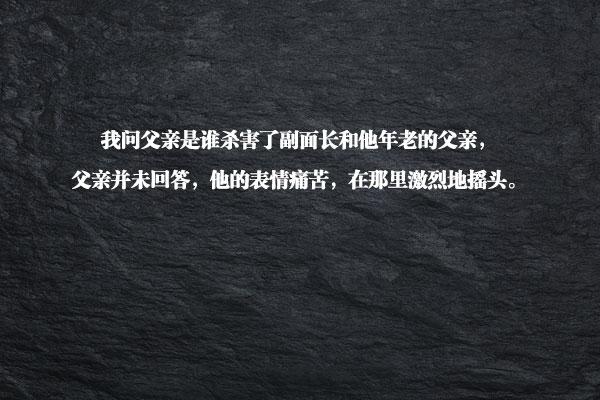 文淳太的《会说话的石头》