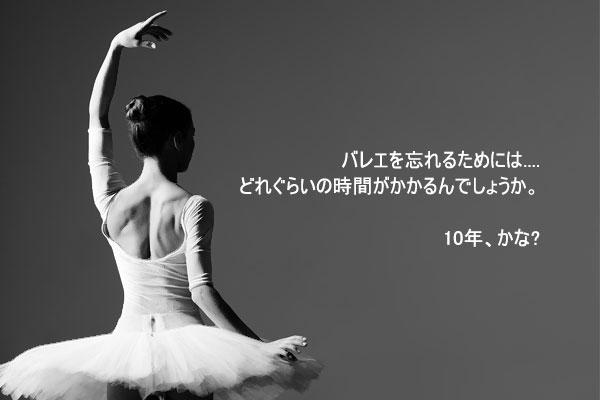 チェ・サンヒの童話「おやすみ、タヌキ」