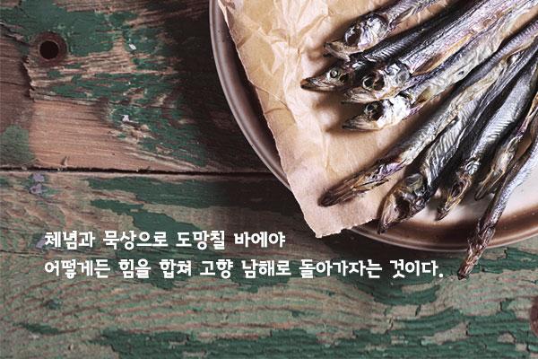 자정의 픽션 - 박형서