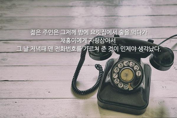 전화 - 염상섭