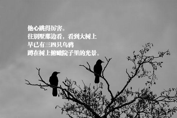 李泰俊的小说《乌鸦》