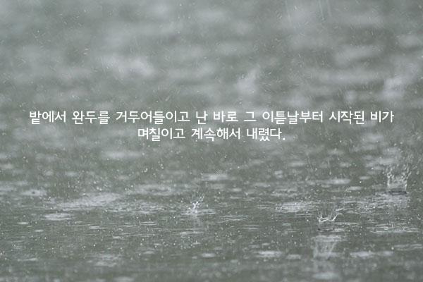 장마 - 윤흥길