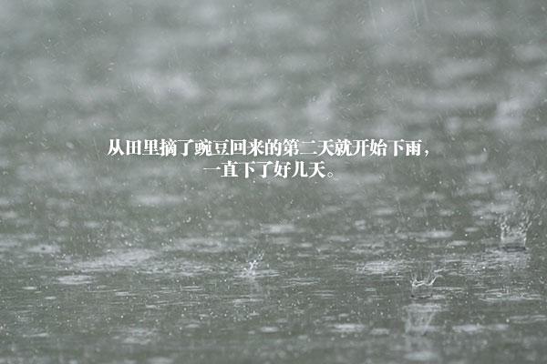 尹兴吉的小说《雨季》