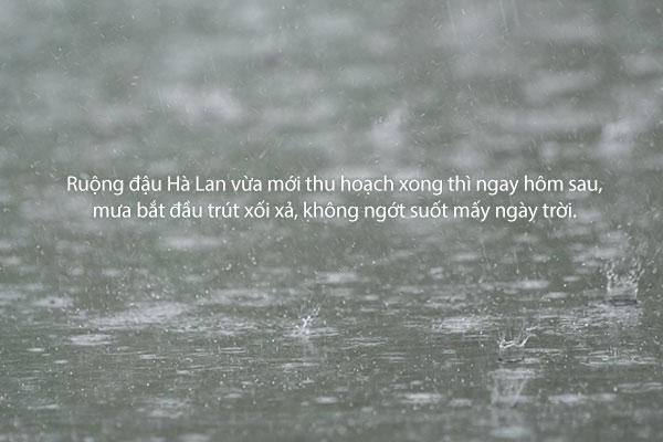 """""""Mùa mưa"""" – Yun Heung-gil"""