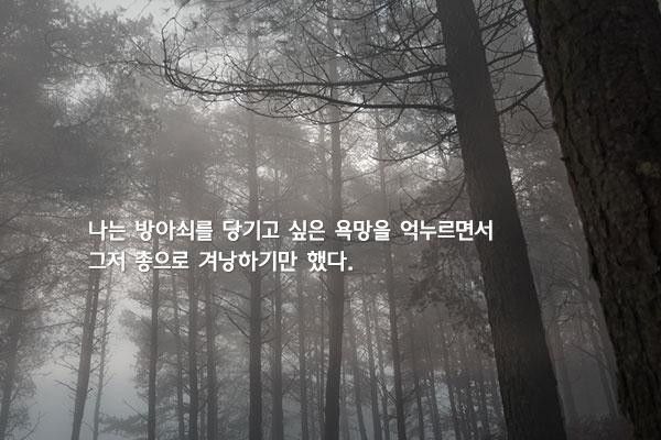 리기다소나무 숲에 갔다가 - 김연수