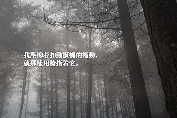 金延秀的小说《去了刚松林》