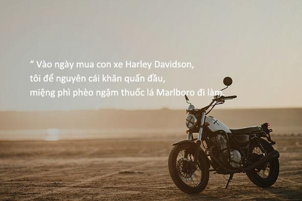 """""""Chào nhé! Harley!""""– Bae Sang-min"""